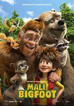Mali Bigfoot - sink