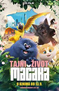 Tajni život mačaka - sink